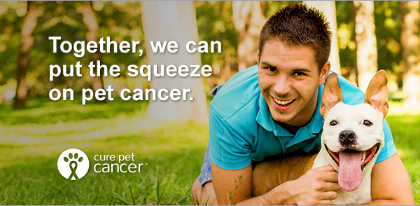 Together, we can put the squeeze on pet cancer